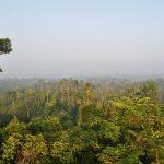 Hutan Harapan Landscape